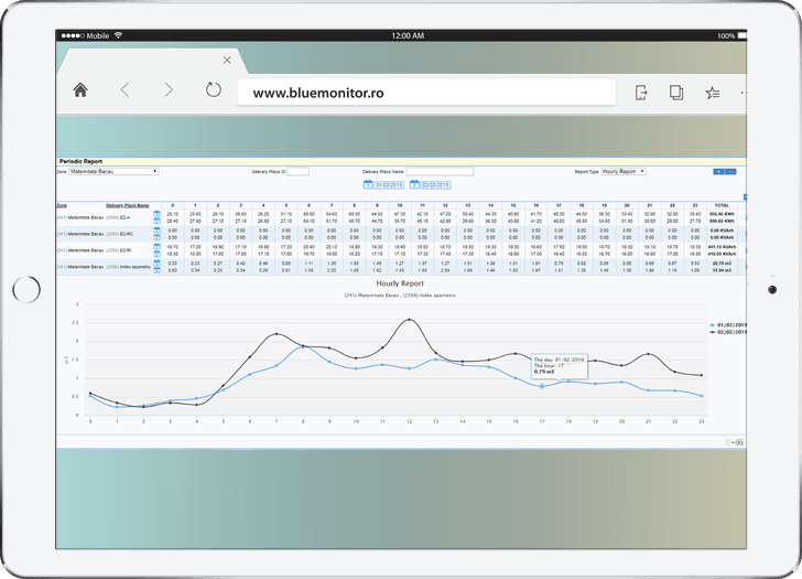 Interfata BlueMonitor - sistem citire la distanta corectoare de volum de gaz